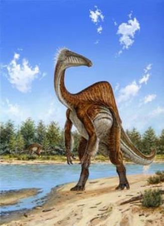 deinocarus